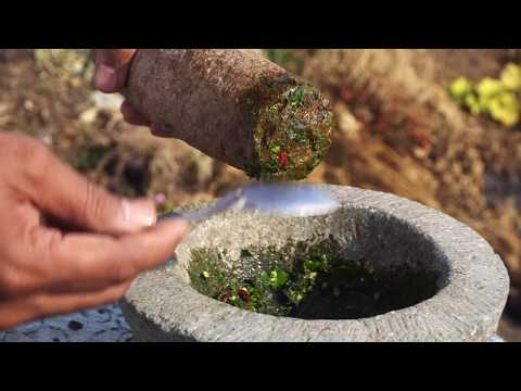Palak Pakora Recipe | Cooking at Farm in India | Indian Village Food By Nikunj Vasoya