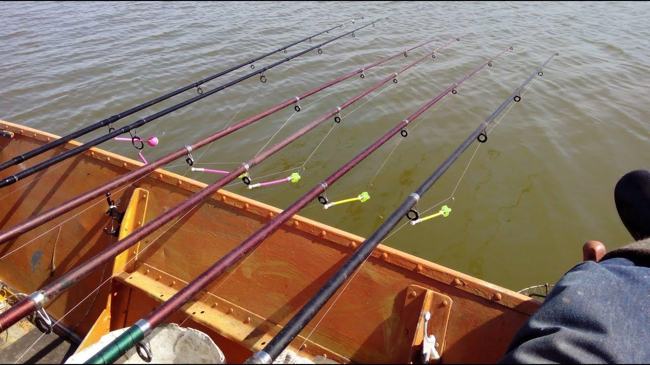 рыбалка ловля карпа сома