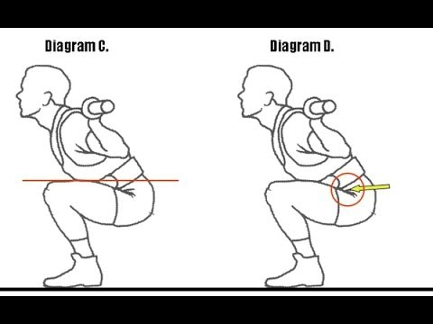 A Guide to Powerlifting Squat Rules Image 1