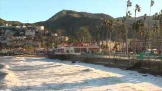 Avalon Harbor Surf- Santa Catalina Island