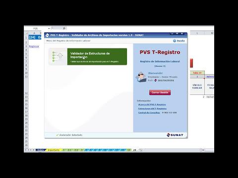Estructuras T-REGISTRO 2013 en Excel automatizadas (Validadas PVS T-R.)