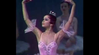 A Favourite Ballerina - A Solo from