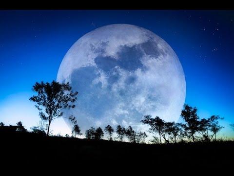 8 Hour Sleep Music: Relaxing Music, Meditation Music, Sleeping Music, Insomnia ☯976