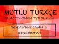 Счастливый турецкий 4 урок Вежливые слова и выражения mp3