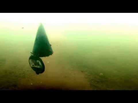 Подводная съемка. Поклевка Ельца. Прикорм рыбы.