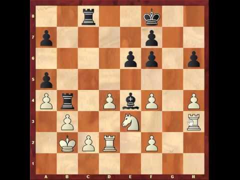 Chess: Susan Polgar 2485 - Murray G Chandler 2575 http://sunday.b1u.org