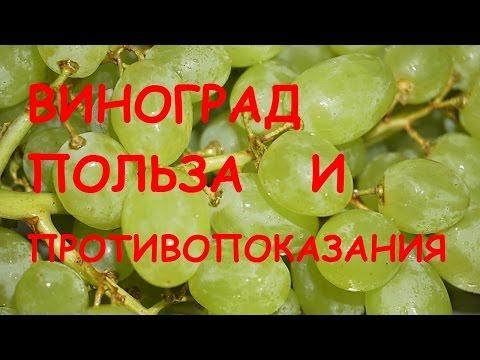 Виноград. Польза и вред для организма.