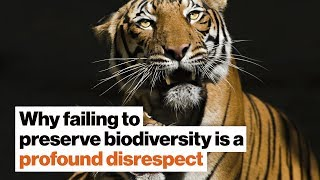 Why failing to preserve biodiversity is a profound disrespect | Susan Hockfield