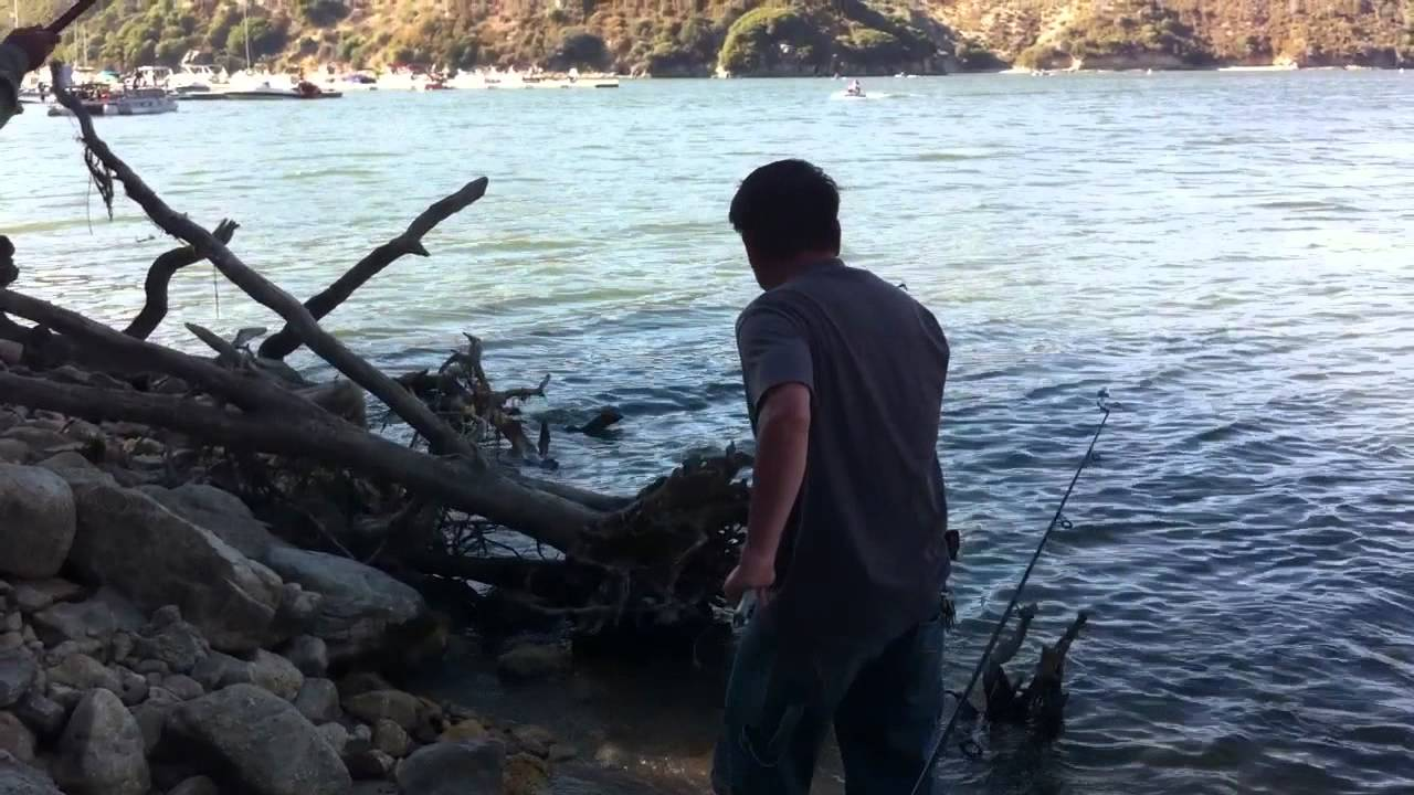 Silverwood lake catfish fishing in hesperia youtube for Silverwood lake fishing report
