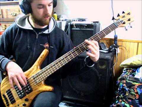 Decrepit Birth - Dimensions Intertwine on bass guitar