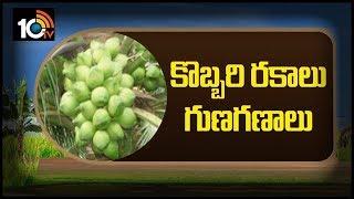 కొబ్బరి రకాలు గుణగణాలు... | AP Coconut Farming Methods | Matti Manishi  News
