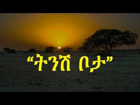 Ethiopia - Amharic Poem: Nebiy Mekonnen (ነብይ መኮንን) -- Tinish Bota (ትንሽ ቦታ)