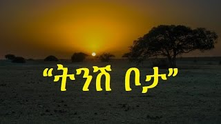 Ethiopia - Amharic poem: Nebiy Mekonnen- Tinish Bota