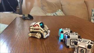 Day 3 with COZMO. Best moments.