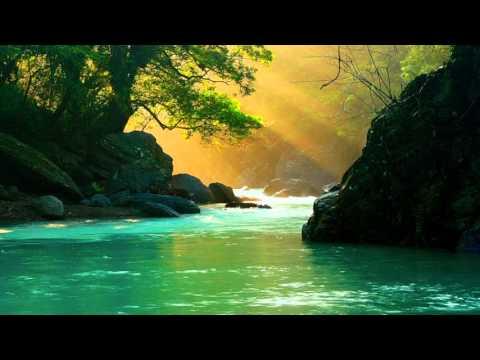 Sviatoslav Richter plays Schubert - Piano Sonata No 14 in A minor, D 784