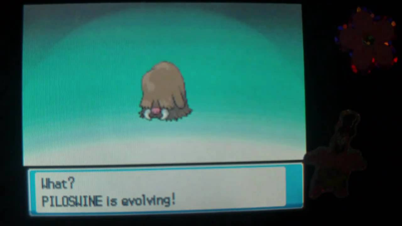 How To Evolve Piloswine Into Mamoswine Pokemon Heart Gold And Soul Silver Youtube