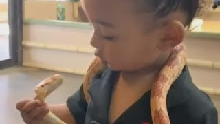 Kim Kardashian's 1-Year-Old Daughter Chicago Fearlessly Plays with Snakes -- Watch!
