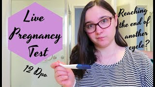 Live Pregnancy Test At 12 Dpo    Trying to Conceive Is Not An Easy Process    TTC Baby #2