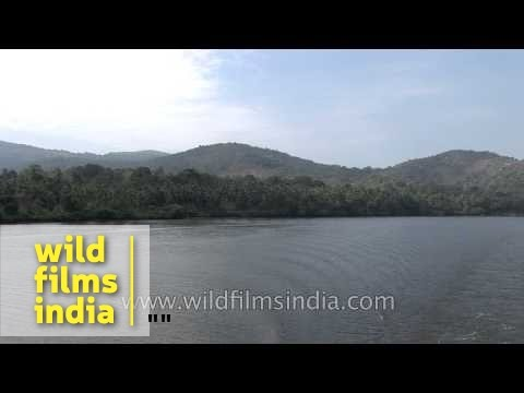 Sand mining on river beds and banks - Kerala