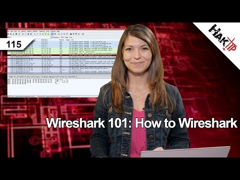 Wireshark 101: How to Wireshark. Haktip 115
