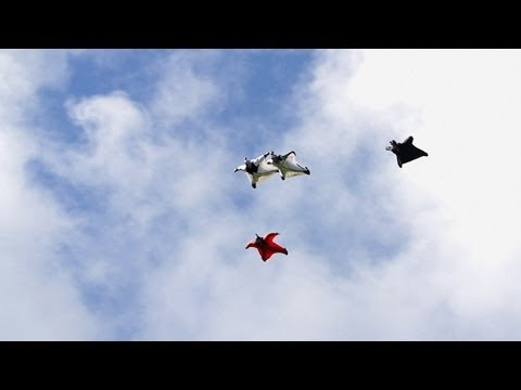 Possibly The Best Wingsuit Flying Ever Captured On Video | Helibase 74 Ep. 4 video
