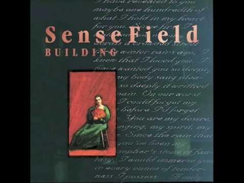 Sense Field - Overstand