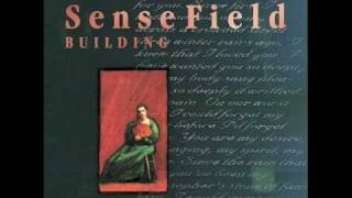 Watch Sense Field Overstand video