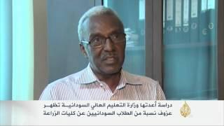 عزوف نسبة من الطلاب السودانيين عن كليات الزراعة