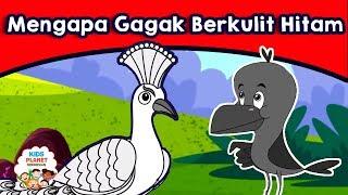 Download Lagu Mengapa Gagak Berkulit Hitam - Cerita Untuk Anak Anak | Dongeng Bahasa Indonesia | Animasi Kartun Gratis STAFABAND