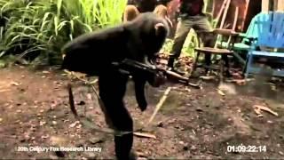 Monkey shoots at Monkeys in Afreaka Happy Day AK-47