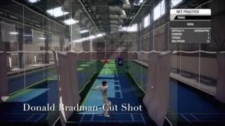 Different Types Of Cricket Shots