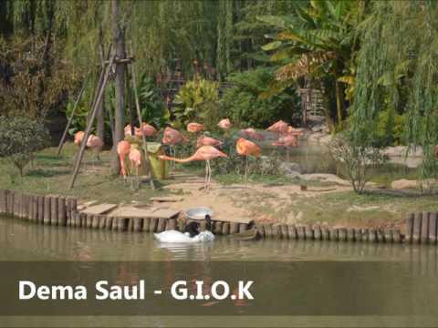 G.I.O.K - Dema Saul (PNG Music)