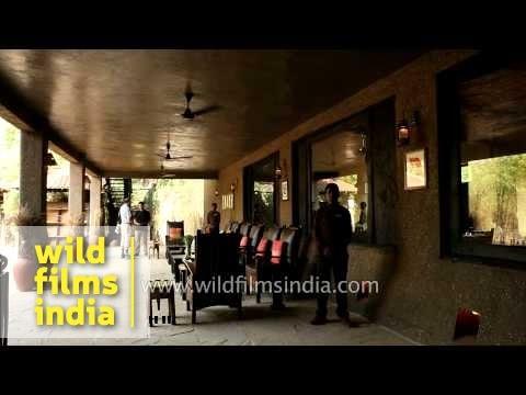 Open living room at KIngs Lodge, Bandhavgarh