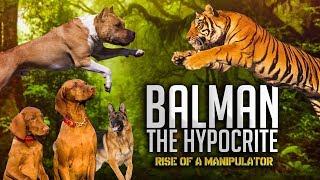 Balman The Hypocrite - Rise of a Manipulator | TahseeNation