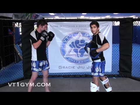 Muay Thai Drills - Focus Mitts Pad Holding Image 1