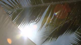 download lagu Schiller - Sonnenuhr gratis