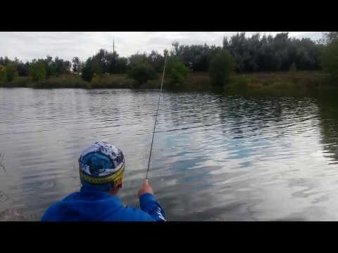 ловля рыбы на канале днепр донбасс