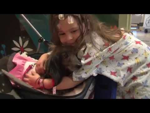 Puppy Love: Hospitalized Kids Cuddle with Canines on Valentine's Day
