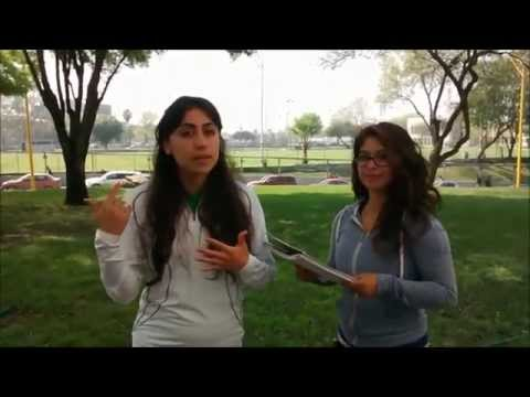 fernanda Reynosa FOD gpo:401