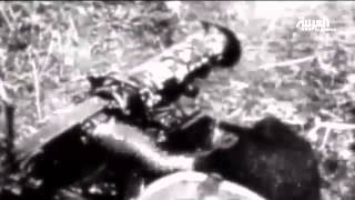 مئة عام على اندلاع الحرب العالمية الأولى
