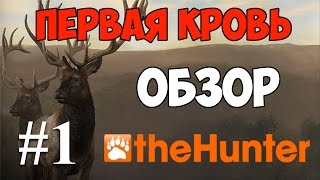 the hunter call of the wild как использовать приманку
