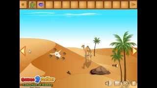 Camel Desert Escape Video Walkthrough