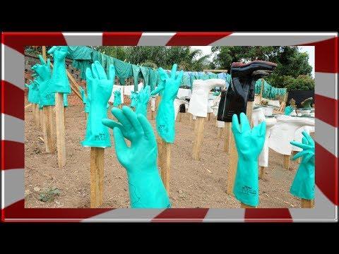 Las 10 cosas del Virus Ebola que debes saber
