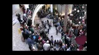 Flash Mob Christmas Carol at Mall - MUST SEE!