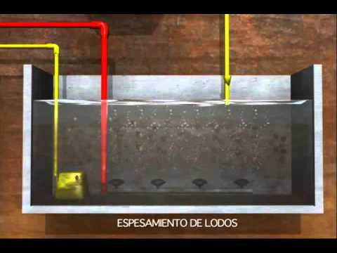 Funcionamiento fosa septica prefabricada