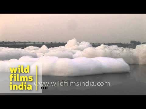 Deadly pollution foam coated Yamuna river!