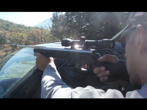 Shooting a .22 caliber Beeman Air Rifle at 250 Foot Target