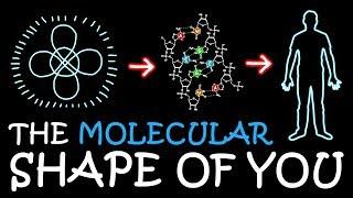 Baixar The Molecular Shape of You (Ed Sheeran Parody) | A Capella Science