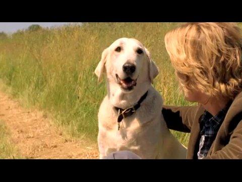Marley & Ich - Trailer video