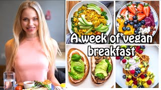 A WEEK OF HEALTHY VEGAN BREAKFASTS/HIGH PROTEIN MEAL PREP OPTIONS/7 EASY AND DELICIOUS RECIPES